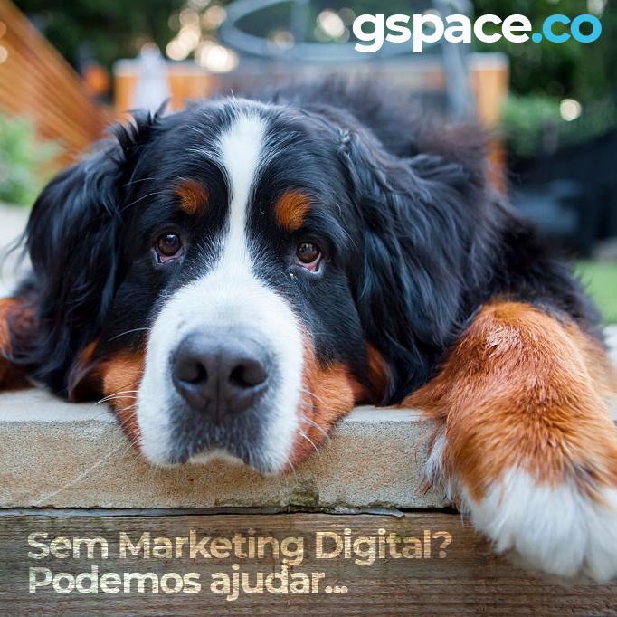 gspace-marketing-digital-campinas